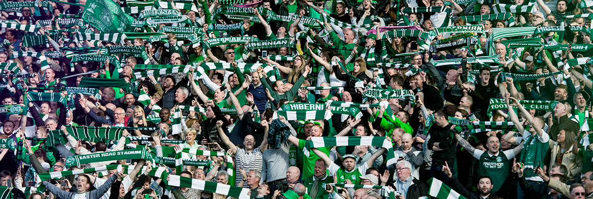 HIBEES AT HOME | YOUR STORIES