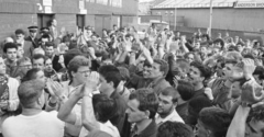 HANDS OFF HIBS - 30 YEARS ON